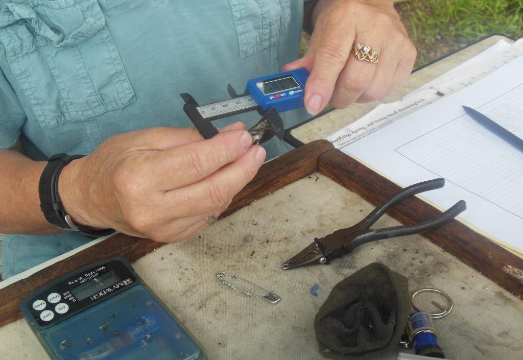 Measuring & cataloging